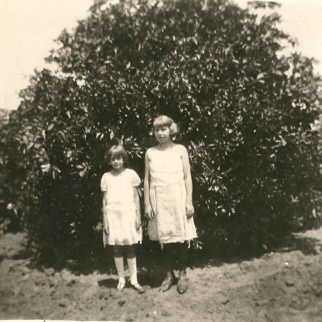 Maurine (right) and Dorothy Tanberg in citrus orchard, Combes, TX, in 1928